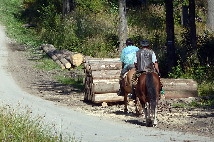 I am just acowboy lonesome on the trail