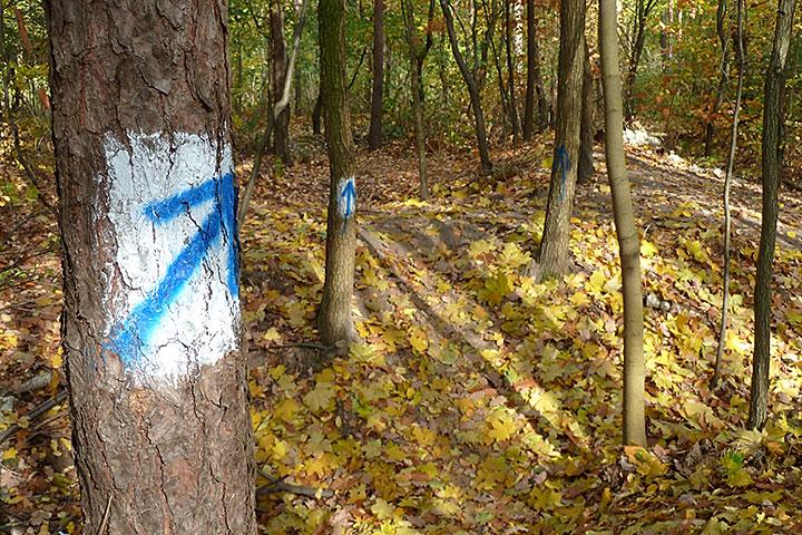 Oznakowanie trasy niebieskiej