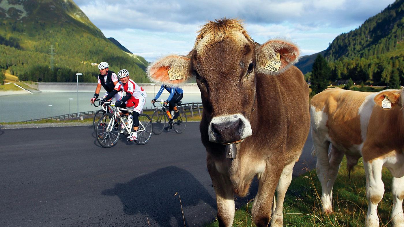 Ötztaler Radmarathon